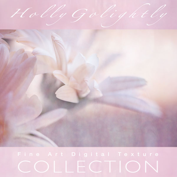 Collection Cover - Holly Golightly