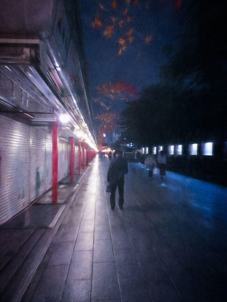 Evening walk through Nakamisedori