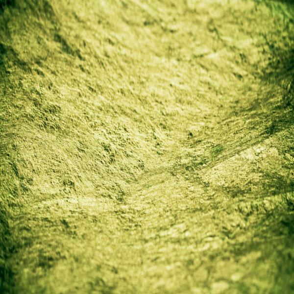 Gross Green Grunge – Thumbnail of a green fibrous paper texture