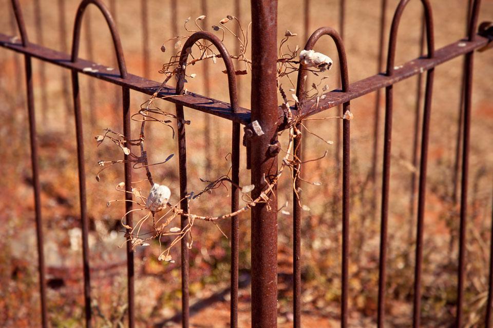 Fence & Wreath