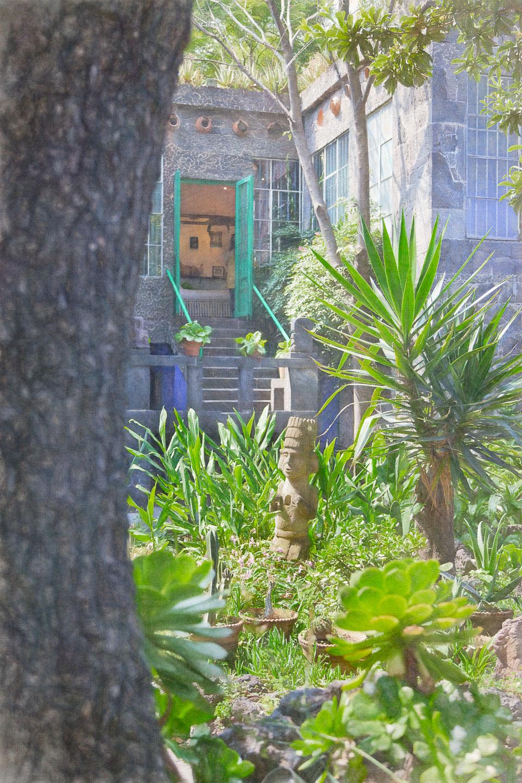 La Casa Azul garden view to house